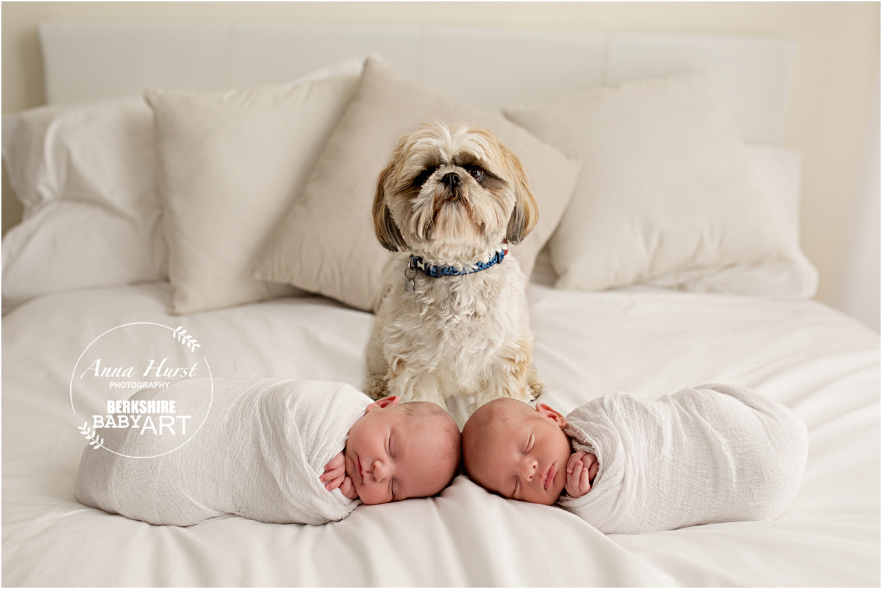 Woodley Newborn Photographer