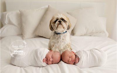 Woodley Newborn Baby Photographer | Arya & Dexter Newborn Twins 18 Days Old